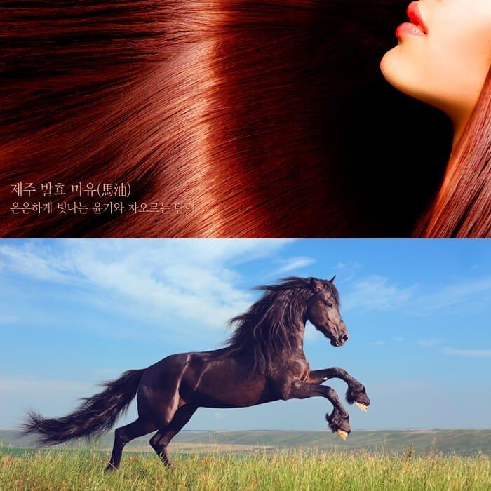 Шампунь для волос SNP Prestige Mayu Treatment Shampoo