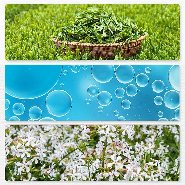 Пенка для умывания The Saem Healing Tea Garden Green Tea Cleansing Foam